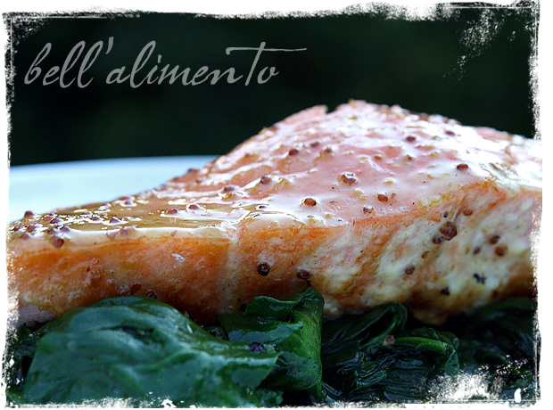 Salmon with Honey Mustard Glaze | bell' alimento