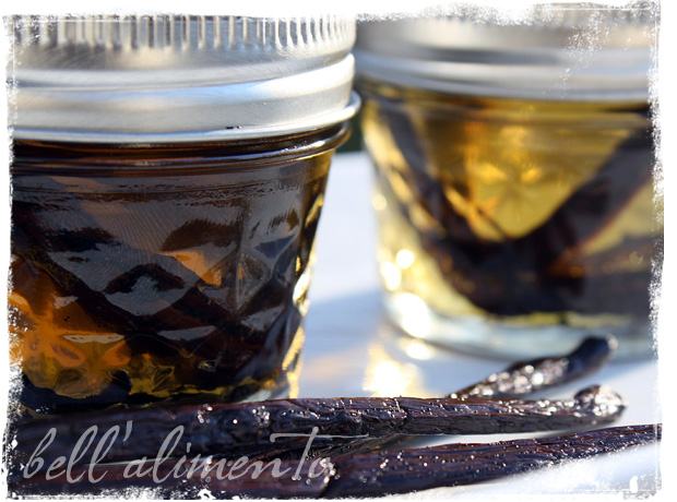 How to Make Vanilla Extract | bell' alimento