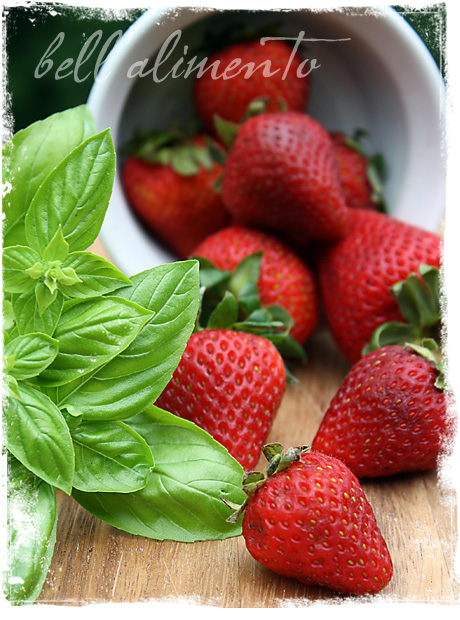 sberrygelato2_wm