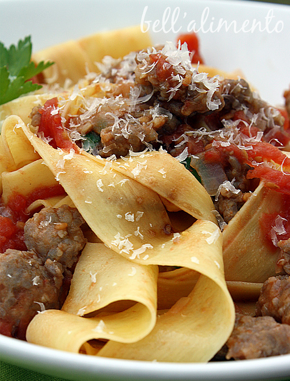 Closeup of Pappardelle pasta with Sausage garnished with grated cheese.