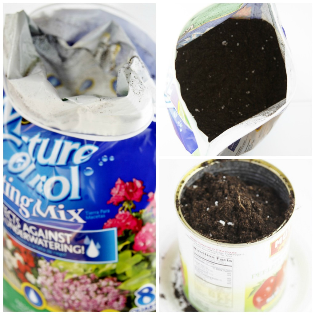 DIY Recycled Can Centerpiece Collage. Miraclo Gro Potting Soil bag. Looking into bag of potting soil. Tin Can filled with potting soil.