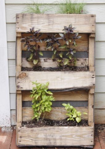 an herb planter with herbs made from a palette