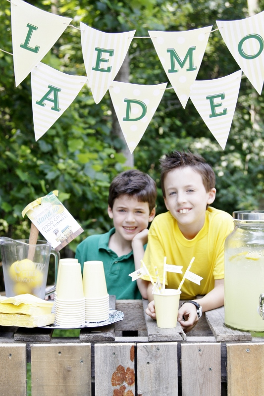 Country Time Lemonade Stand | www.bellalimento.com