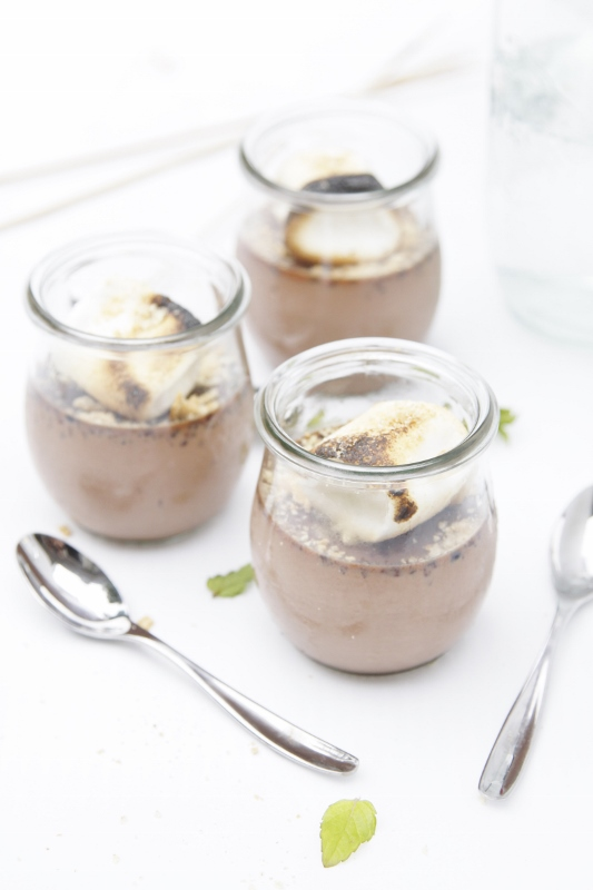 NOW go get my recipe for PANNA COTTA S'MORES .