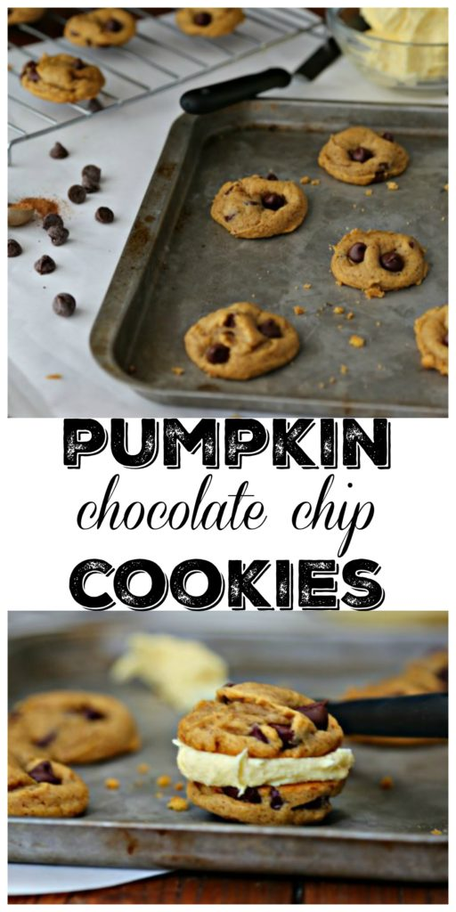 Pumpkin Chocolate Chip Cookies on a baking sheet and stuffed with icing
