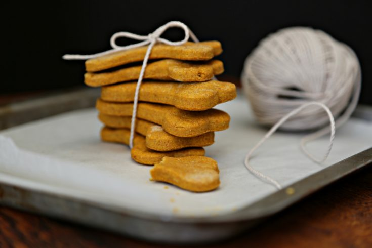 Peanut Butter Pumpkin Dog Treats on a baking sheet tied with twine