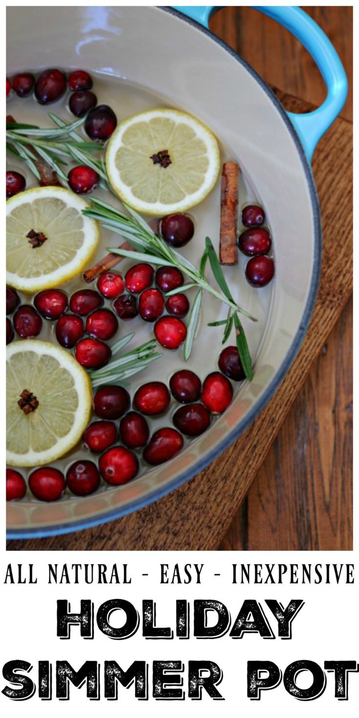 Want a clever, all natural and inexpensive way to make your house smell amazing during the holidays? Make this EASY Holiday Cranberry Spice Simmer Pot. #simmerpot #holidays #diy #allnatural
